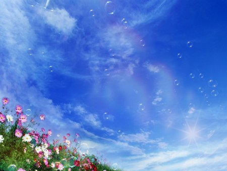 Beautiful Flowers - flowers, grass, sky, colors, nice, nature, beautiful, fantasy, clouds