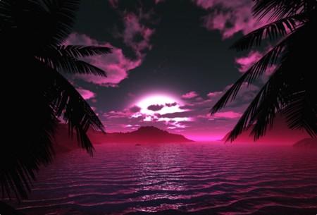 Midnight Cove Pink