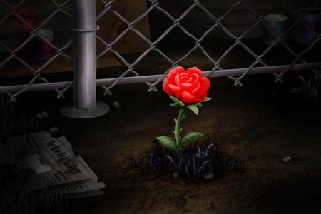 Concrete Rose 3d And Cg Amp Abstract Background Wallpapers