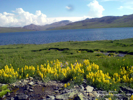 Deosi Lake Skardu Pakistan  - baltistan, lake, pics, beautiful, skardu, khadimskardu, deosi, photos, pakistan