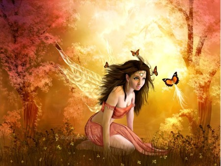 In the light of the sun - pretty, colorful, forest, butterflys, fantasy, fairy, fae