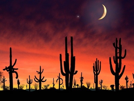 Cacti on a red hot night - desert, beautiful, sky, clouds, catus, moon, red sky, star, cacti, night