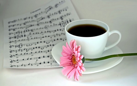 Coffee Time - cute, nice, coffee, cup, flower, flowers, nature, musical notes, white, pink