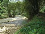 River Jamaica