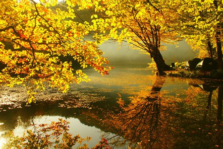Dream Autumn - red, dreamy, lakes, autumn, yellow, trees, leaf, leaves, water, heaven, reflections, reflected, dream, rivers