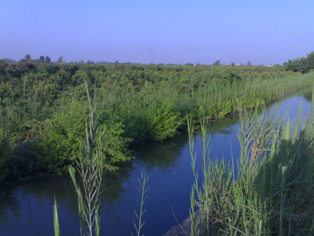 countryside - egyptian countryside, rivers