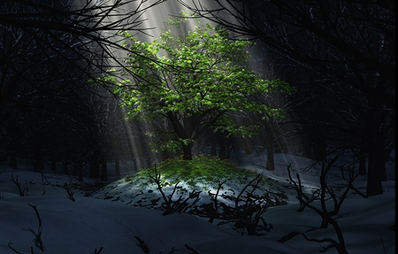 The Promise Of Spring - forest, hope, landscapes, dark, woods, rays of light, shadows, nature