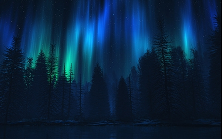 Song Of The Sky - forest, northern lights, landscapes, woods, electric sky, nature, trees