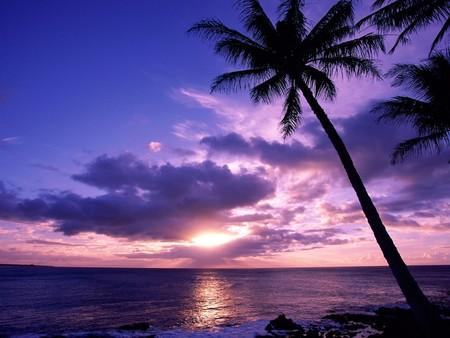 Island Paradise Wallpaper Paradise Island