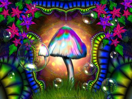 magic mushroom - magic mushrum, abstract, 345