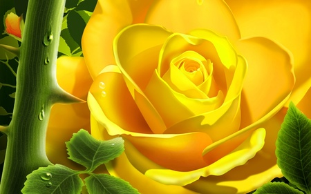 Yellow Rose (WDS) - its so cool, digital flower, widescreen, 3d and cg, wds, 3d, flower, yellow, cool, digitalflower, rose, digital flowers