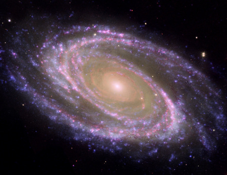 M81 Galaxy - Pink Coloration - messier 81 galaxy, m81 galaxy, messier 81, m81