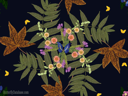 Butterfly Salute - maple leaves, flowers, design, butterflies, green leaves