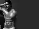 Stefan Pinto > Model