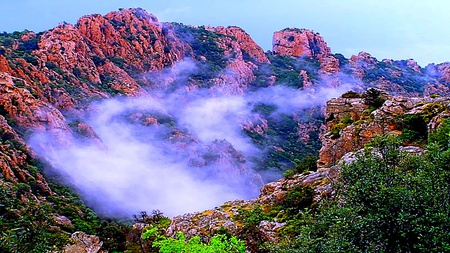 Amazing Mist Between Mountain - mist, beauty, amazing, colorful, forest, mountain