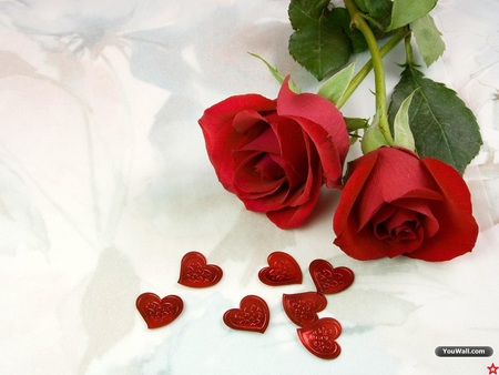 Roses And Hearts Flowers Nature Background Wallpapers On Desktop