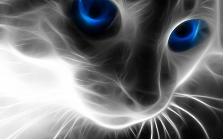 digital-cat - digital, cg, blue, cat, cats, hot, abstract, 3d, eyes, animal, cool, animals, art, digital art