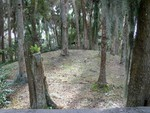 ~Ancient Indian Temple Mound~Oelsner Mound~Port Richey, Florida~