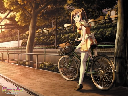 anime sport - anime orang, girl, short hiar, anime, anime sport, cute, anime girl, sweet