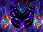 Awsum Butterfly