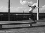 Skate 4 life