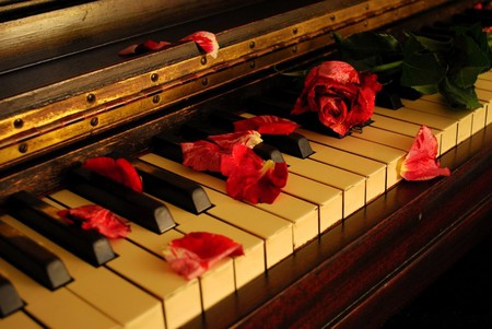 White Rose Piano Wallpaper Rose Piano Wallpaper Piano