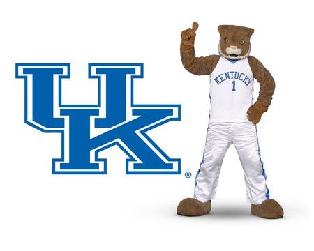 Kentucky wildcat - basketball, big blue, kentucky, mascots, sports, wildcats