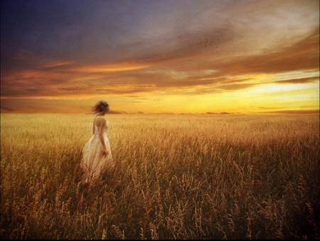 Catcher in the rye - hot, scene, nature, field