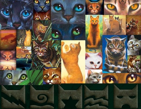 Warrior Cats Collage