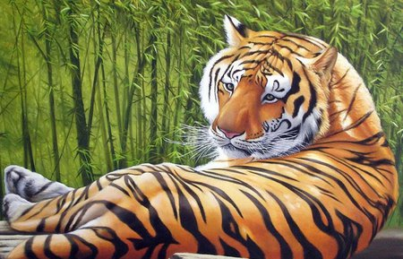 Tiger - tigre, tiger, animals, wild
