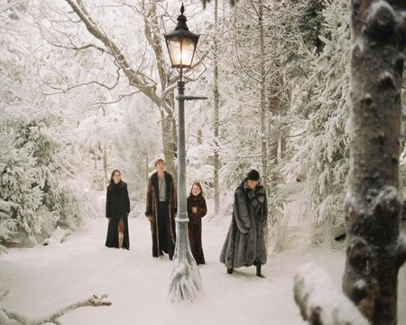 Narnia: the movie - motion picture, the chronicles of narnia, narnia, cinema, magical, adventure, movie, family