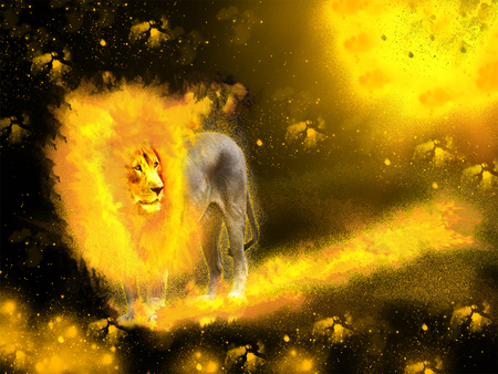 Lion Fire - Fantasy & Abstract Background Wallpapers on ...