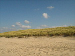 The coast of the Netherlands; beach and dunes