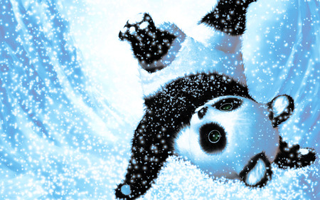 Cute Snow Panda 3d And Cg Abstract Background Wallpapers