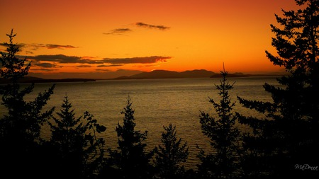 Sunset Over Water - firefox persona, sunset, widescreen, island, washington, trees, framed