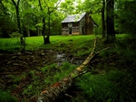 CARTER SHILDS CABIN CADES COVE