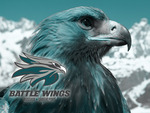Bossier-Shreveport Battle Wings