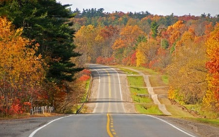 Highway - autumn, highway, road, nature, trees, forests