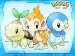 Pokemon Starters Piplup,Chimchar,Turtwig