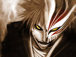 Bleach Ichigo/Hollow