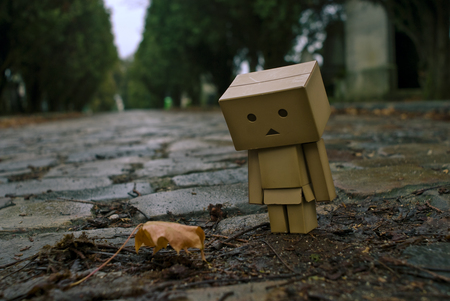Leaf with Danbo - robot, danbo, leaf