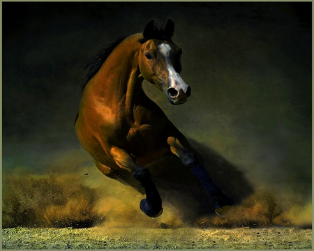 THE END OF THE BATTLE - brown, strong, speed, run, horse, stallion
