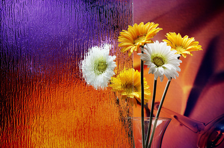 Lovely Flowers - pretty, colorful, orange, yellow, vase, beautiful, still life, photography, nice, love, bright, posies, flowers, beauty, other, lovely, colors, daisies, windows, glass, water, vases, bouquet, flower, sunshine, nature, white, daisy