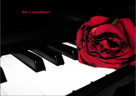 if only... - red, romantic, romance, rose, piano, thinking, thought, true, love, flower