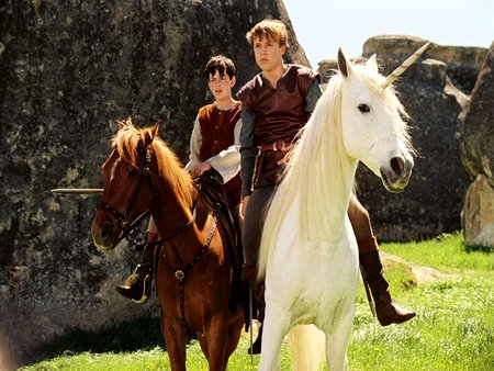 Narnia  - epic, sdventure, animal, family, battles, narnia, magical, action, good vs evil, unicorns