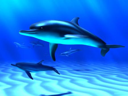 3D-Dolphins-Close - art, cg, dolphins, sea, 3d, animals, fish, ocean, abstract, marine animals