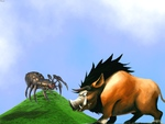 Spider against boar