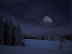 WINTER NIGHT WITH FULL MOON