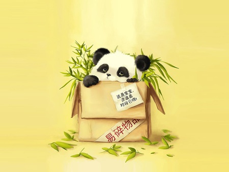 Cute Panda Bear - panda, panda bear, drawing, bear, box, chinese, bamboo