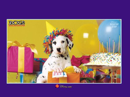 Happy Birthday To A Dalmatian Dogs Amp Animals